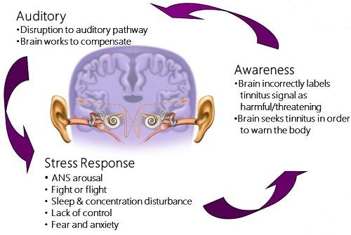 how to fix brain damage rimworld